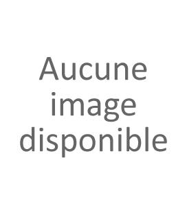 Boucles d'oreilles Tour Eiffel vintage